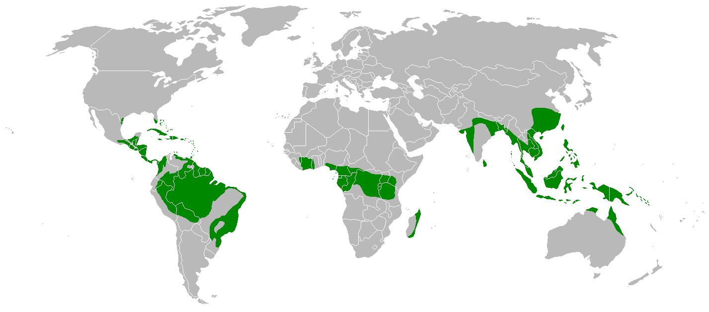 Карта вологих екваторіальних лісів