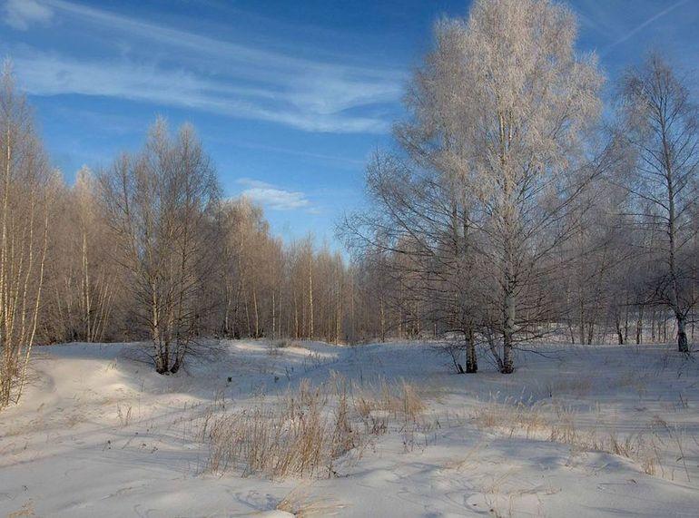 Клімат Руської рівнини