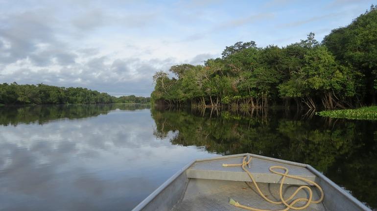 Параметри Амазонки