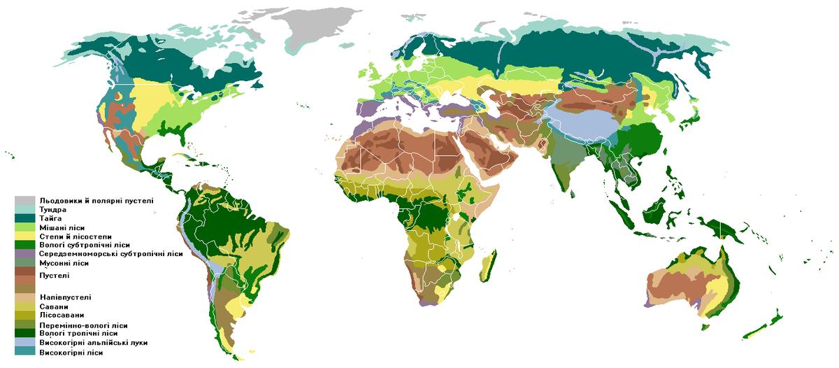 Савани на мапі світу