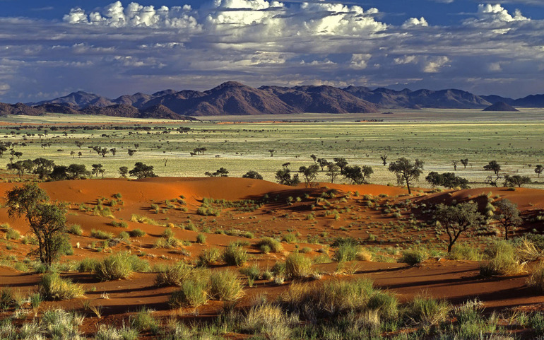 Савани та пустельні зони