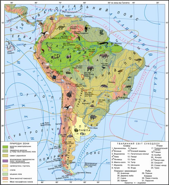 Тварини і ґрунти Південної Америки