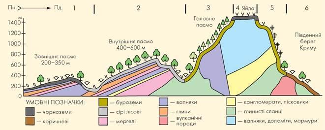Висотна поясність Кримських гір