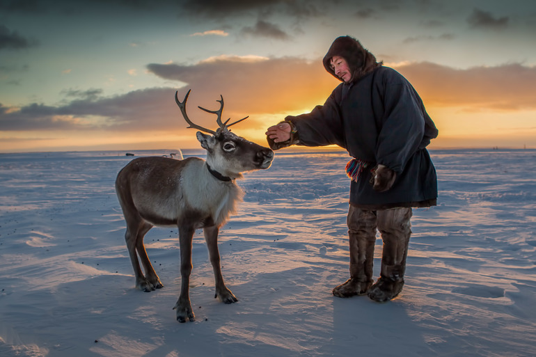 Жителі Арктики