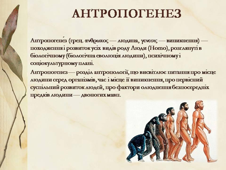 Антропогенез - визначення