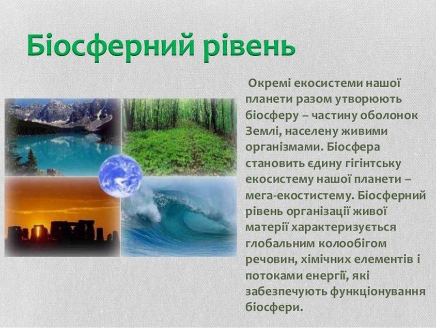 Біосферний рівень