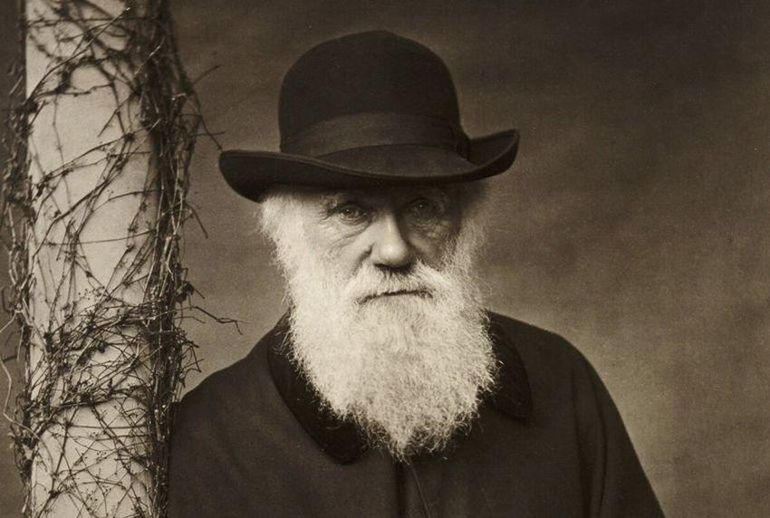 Дарвін