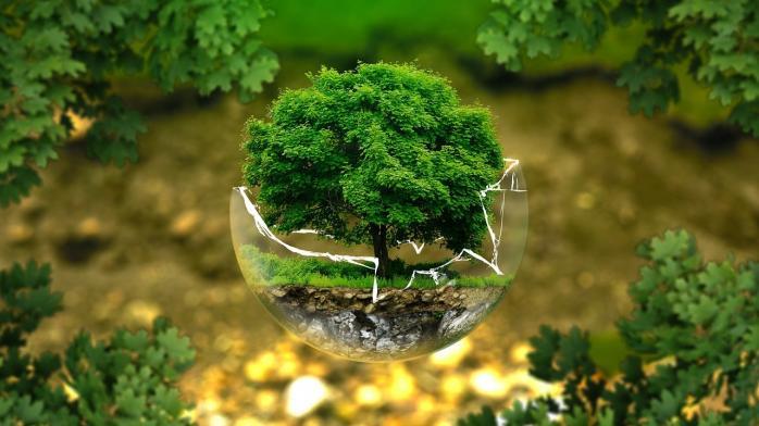 Екологія2