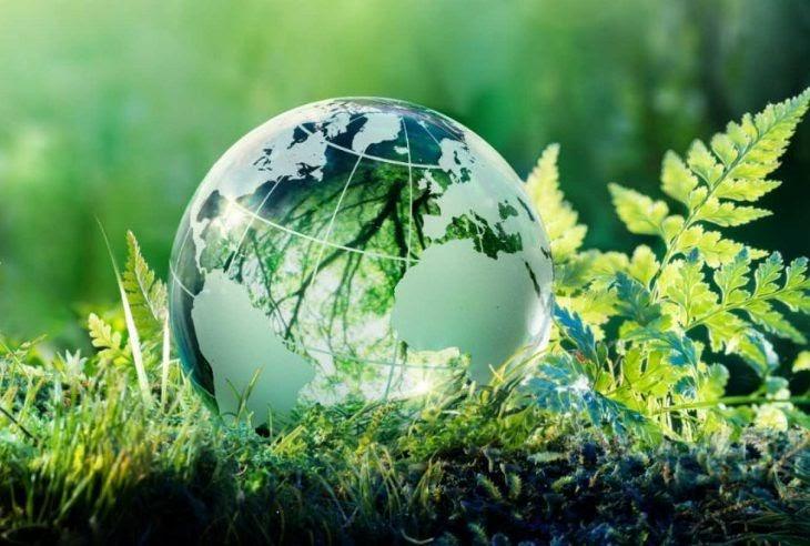 Екологія6
