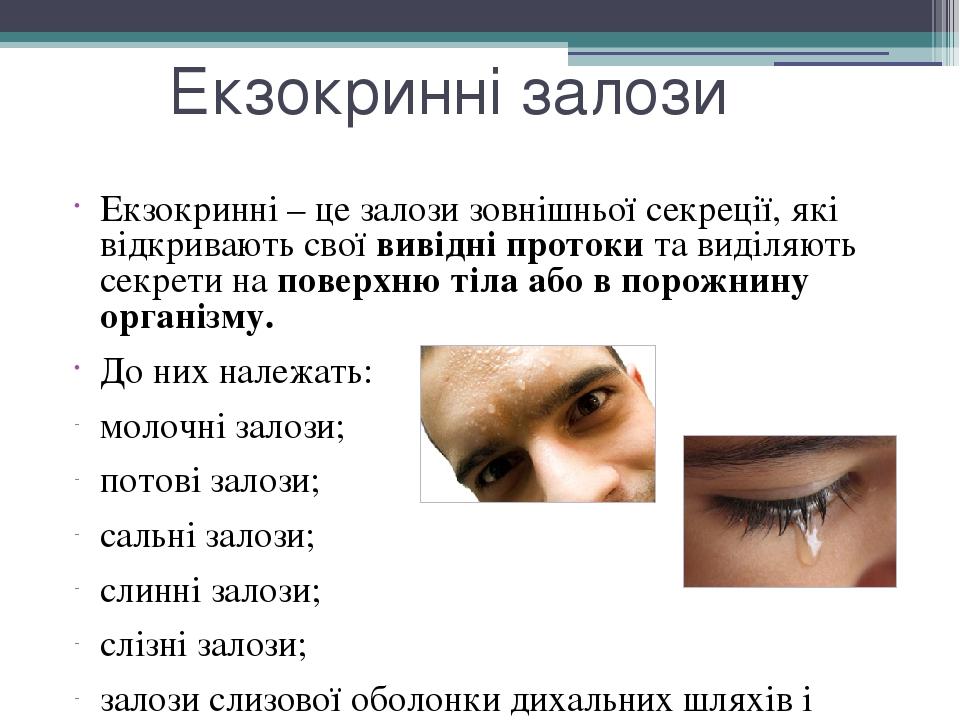 Екзоринні залози