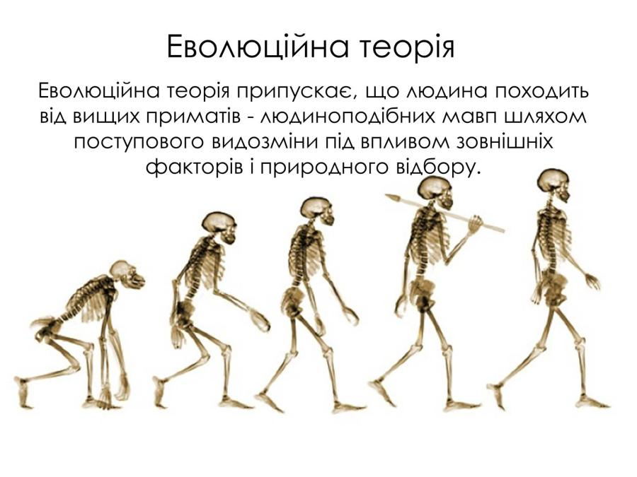 Еволюційна теорія