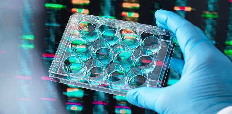 Функції біотехнології