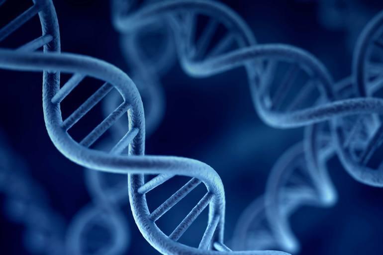 Генетика10