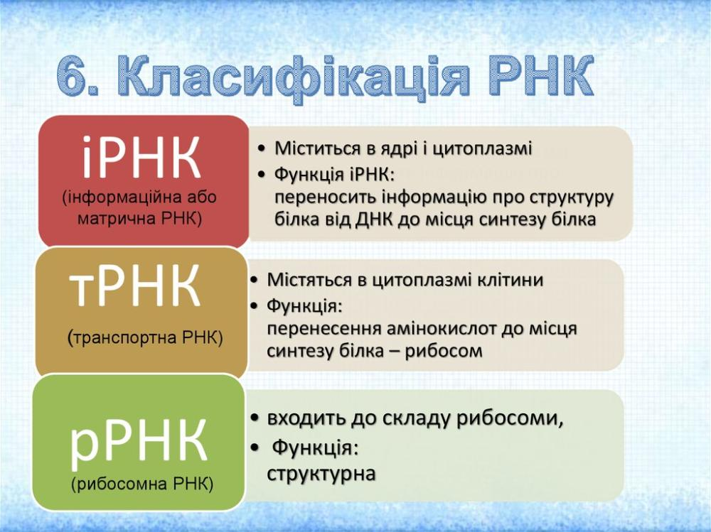 Класифікація РНК