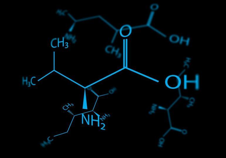 Ліпіди2