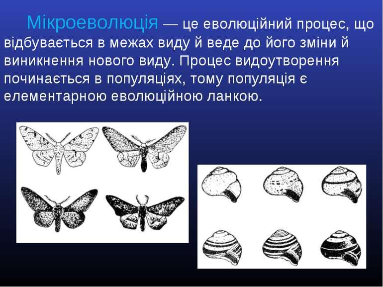 Мікроеволюція2