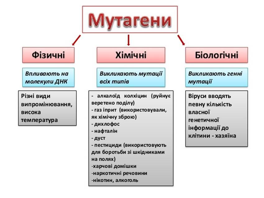 Мутагени
