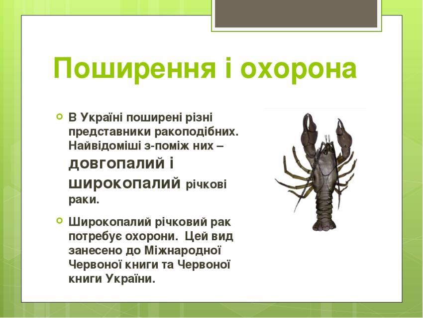 Поширення і охорона ракоподібних