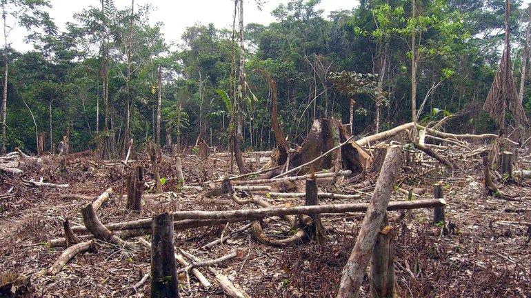 Проблеми екології