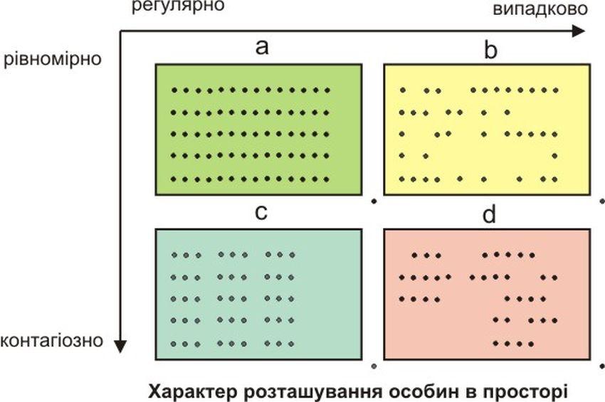 Просторова структура популяцій