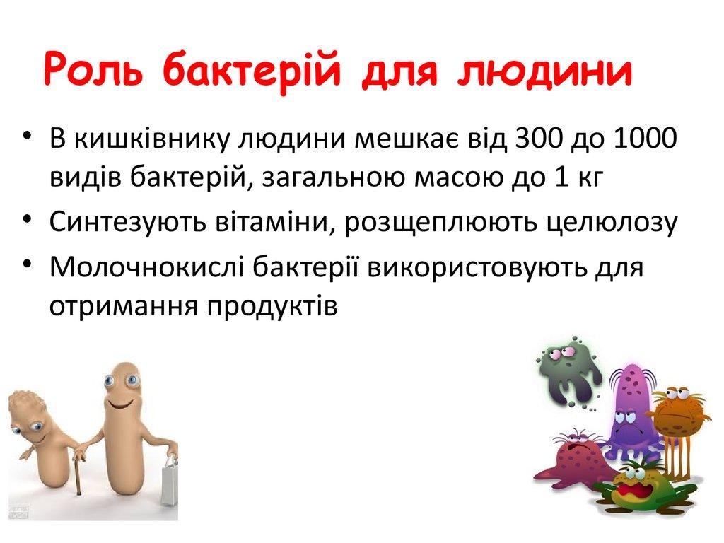 Роль бактерій для людини