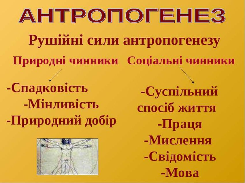 Рушійні сили антропогенезу - схема
