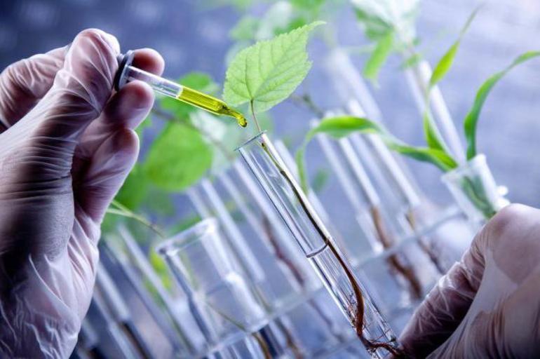 Що таке біотехнології