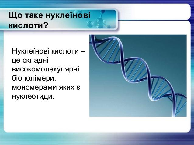 Що таке нуклеїнові кислоти
