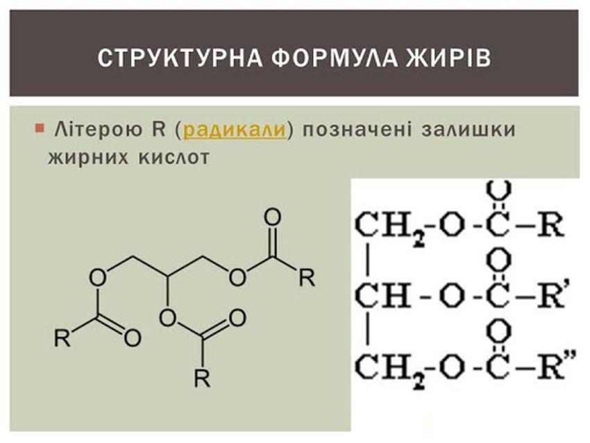 Структурна формула жирів