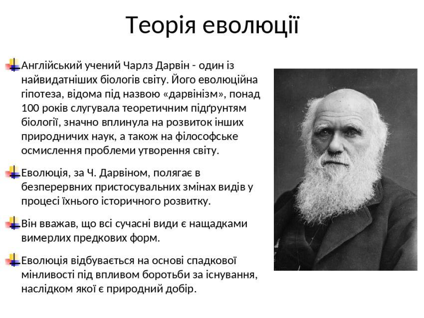 Суть теорії еволюції Дарвіна