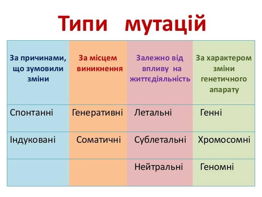 Типи мутацій