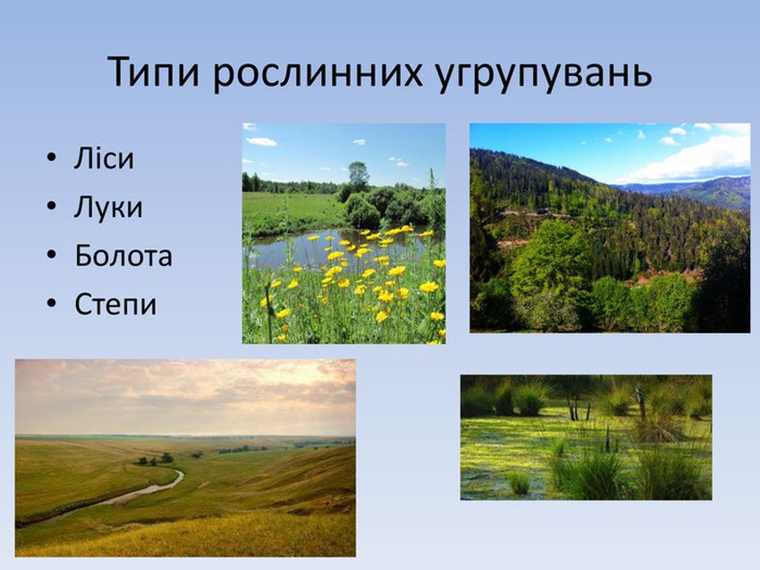 Типи рослинних угруповань
