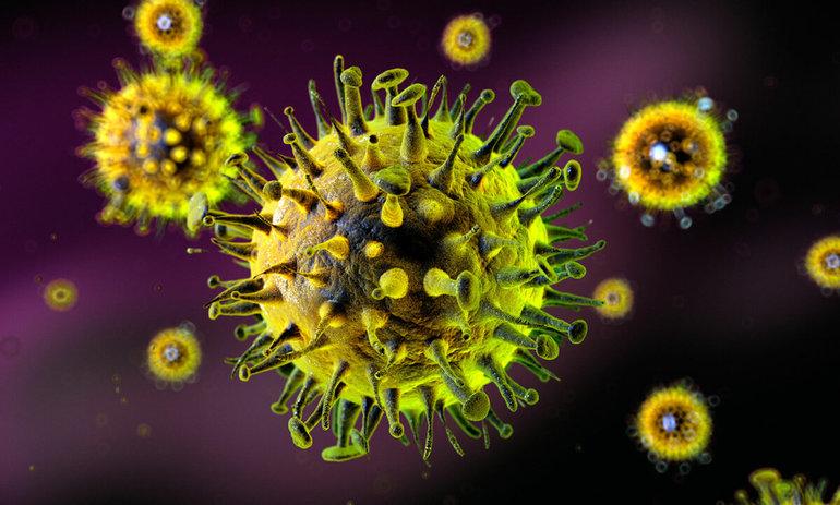 Вірус - біологія