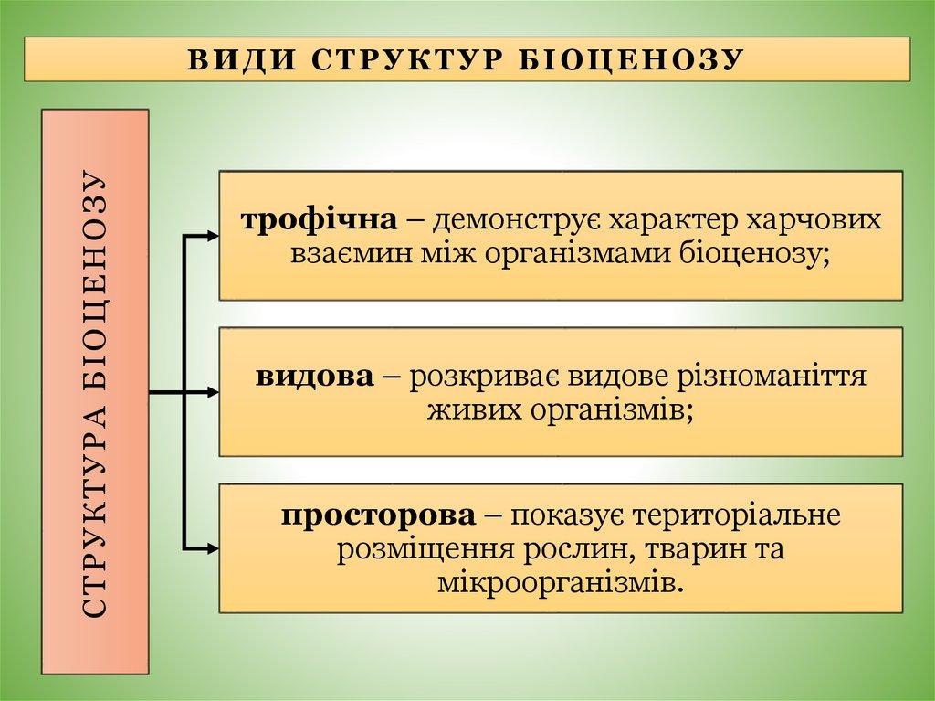Види структур біоценозу