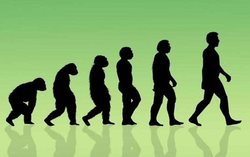 Еволюція людини - малюнок