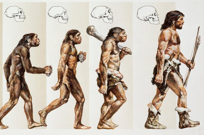 Еволюція людини - малюнок2