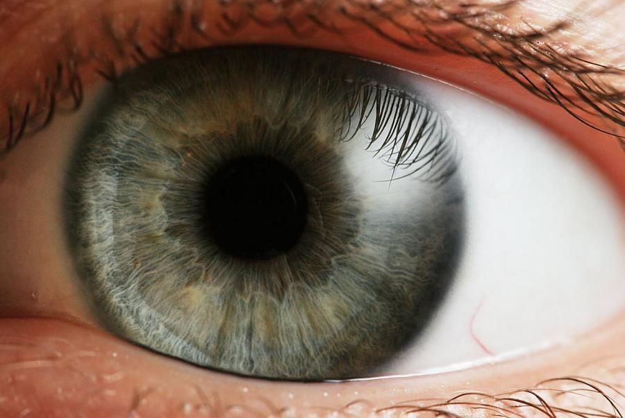 Індивідуальний малюнок райдужної оболонки ока