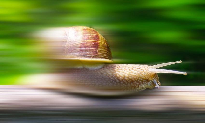 Находження швидкості у фізиці