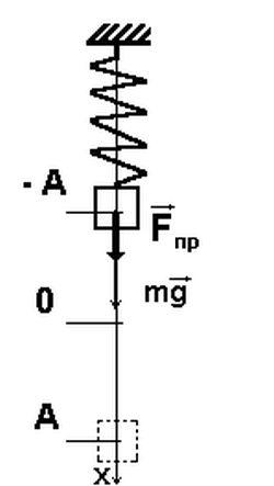 Пружинний маятник - приклад