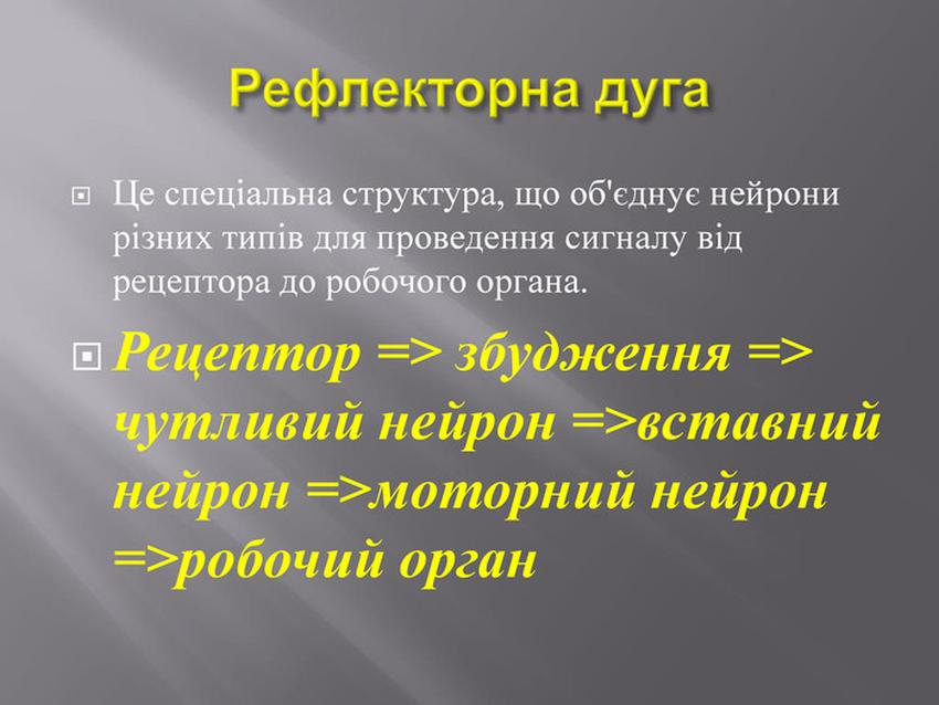 Рейлекторна дуга