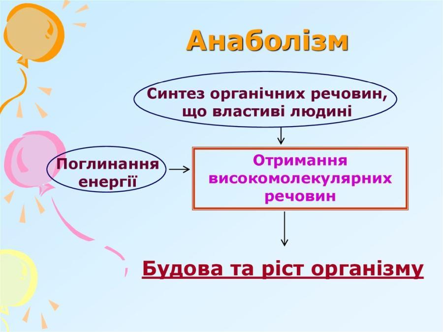 Схема анаболізму