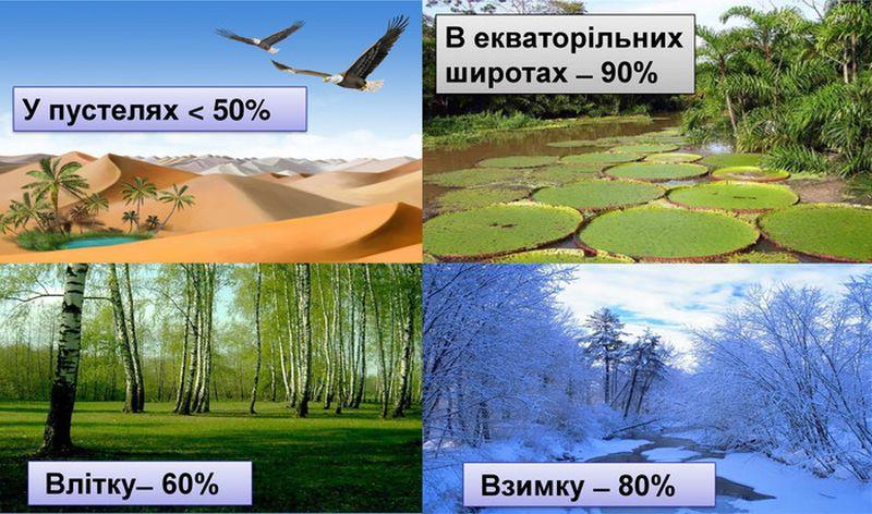 Вологість повітря в різні пори року