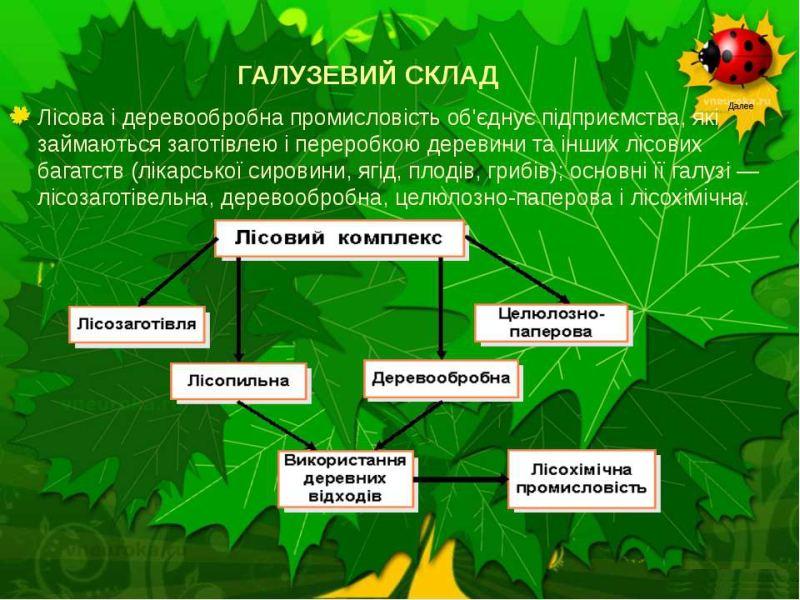 Галузевий склад лісового комплексу