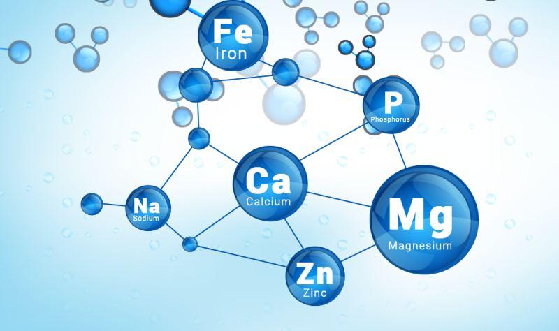 Хімічні елементи в організмі