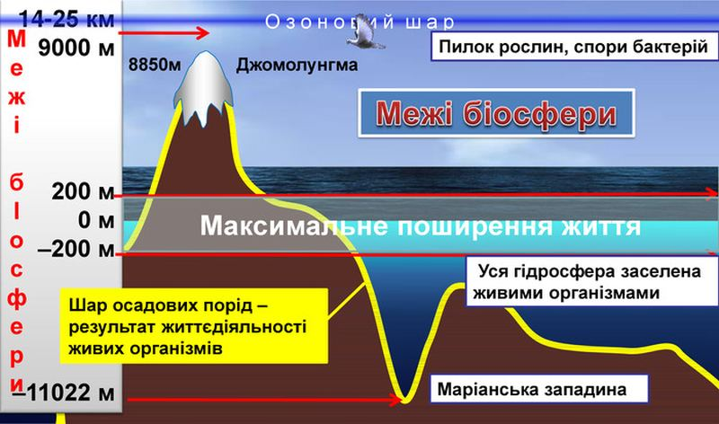 Межі біосфери