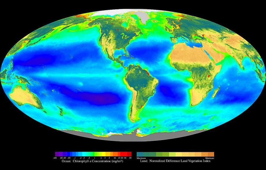 Продукція біомаси фотоавтотрофами материків та океанів