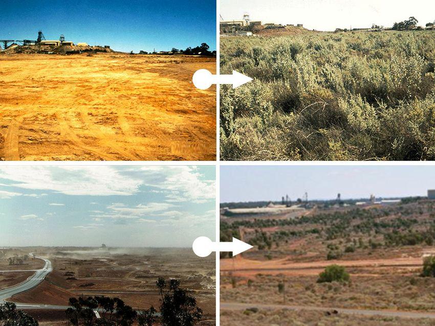Рекультивація земель до і після