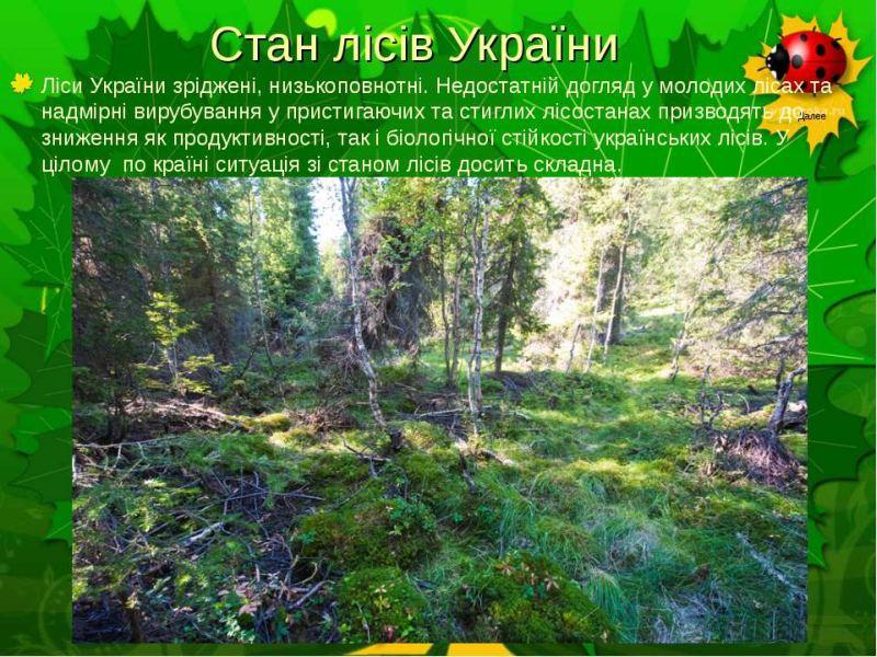 Стан лісів України
