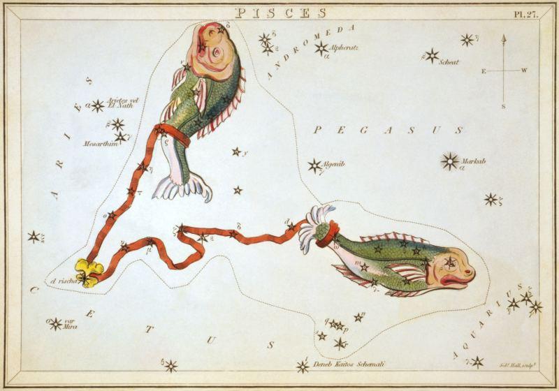 Сузір'я Риб із «Дзеркала Уранії», набору тематичних карток опублікованого в Лондоні