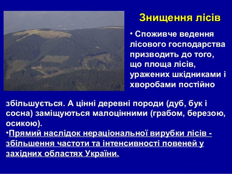 Знищення лісів України